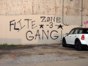 Street Gang Crimes